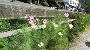 夏休み in九州
